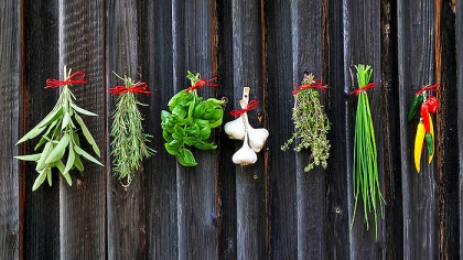 15 Types of Herbs and Their Uses